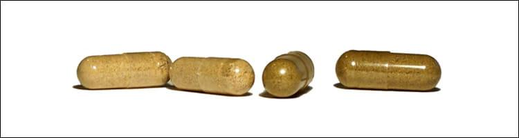 Suplementtos nutricionales a base de plantas