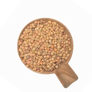 Lenteja Castellana Ecológica a granel