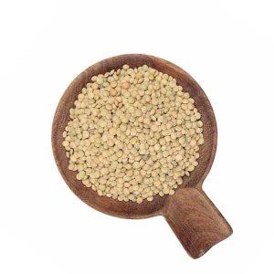 Lenteja Stón Ecológica a granel